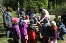 Kinderwald Mengsberg